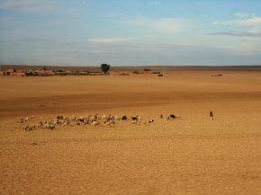 Marruecos 02